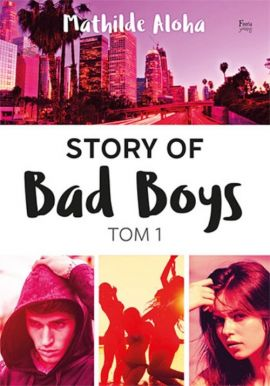 Story of Bad Boys Tom 1 - Mathilde Aloha
