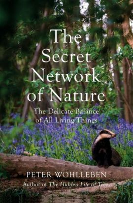 Secret Network of Nature - Peter Wohlleben