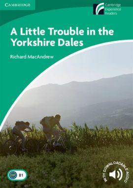 A Little Trouble in the Yorkshire Dales - Richard MacAndrew