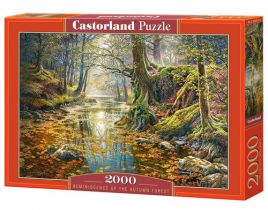 Puzzle Reminiscence of the Autumn Forest 2000